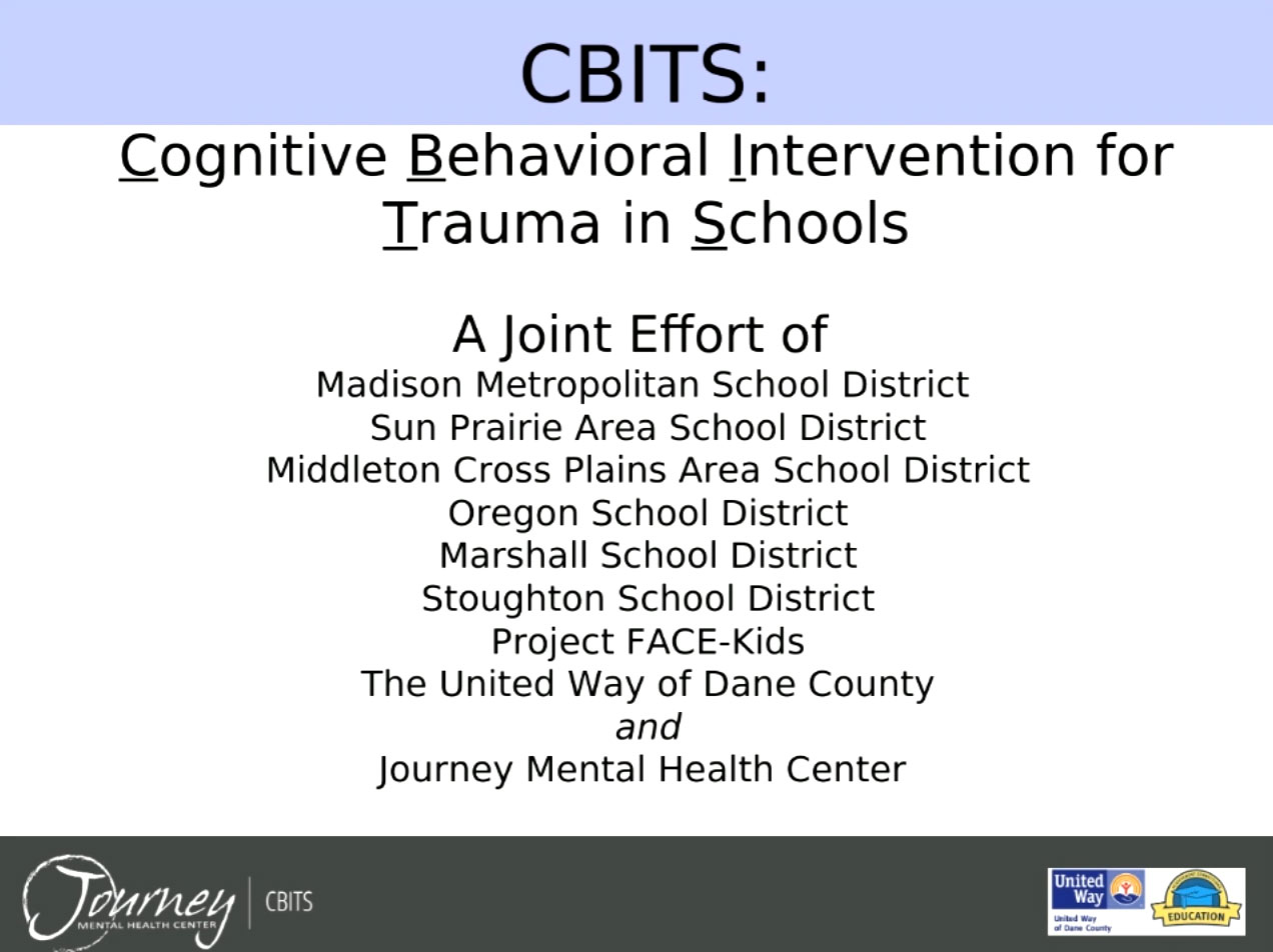 Picture from Cognitive Behavioral Intervention for Trauma in Schools (CBITS) video
