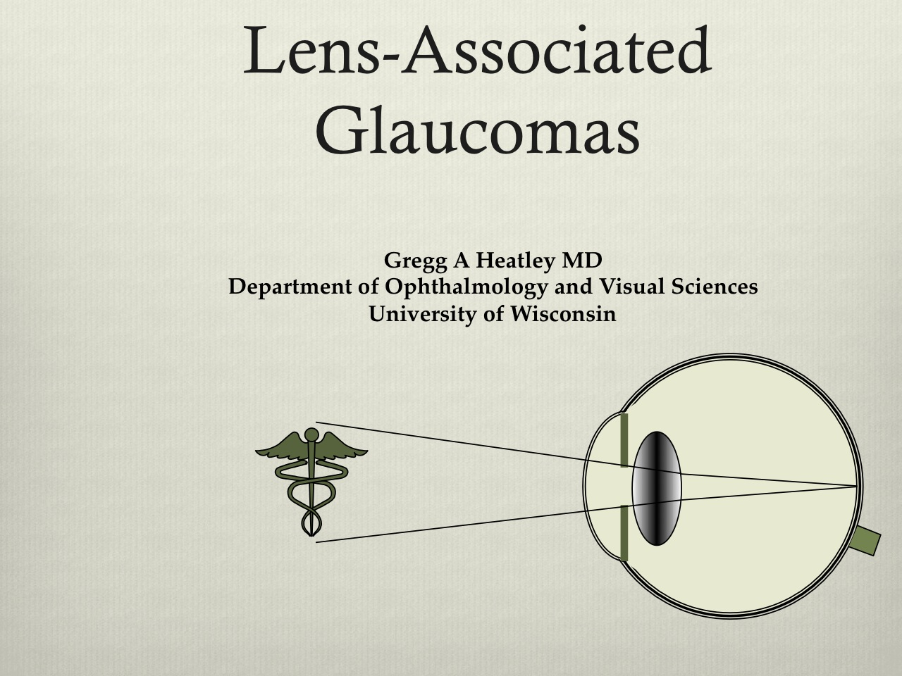 Picture from Dept. of Ophthalmology and Visual Sciences Grand Rounds - Heatley video