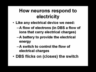 Picture from How Neurons Respond to Electricity and DBS Electronics & Anatomy video